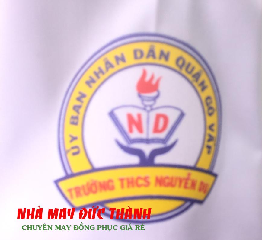 Logo trường cấp 2 Nguyễn Du quận Gò Vấp TPHCM
